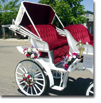 White Wedding Carriage