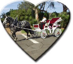 heart shaped picture of gray Percheron draft horse and white carriage