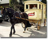 Horse and bread wagon used in Sara Lee Promotion